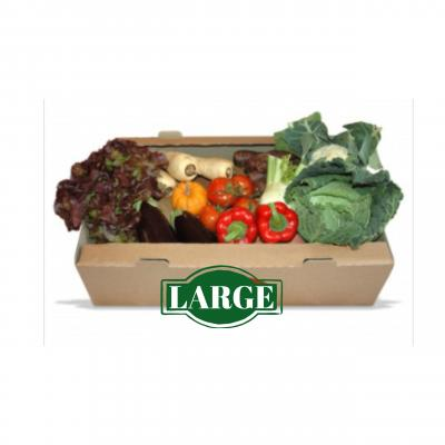 Picture of Veg Box - Large